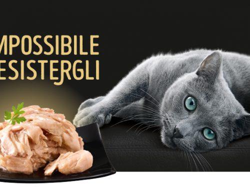 Sheba – prodotti raffinati per gatti esigenti