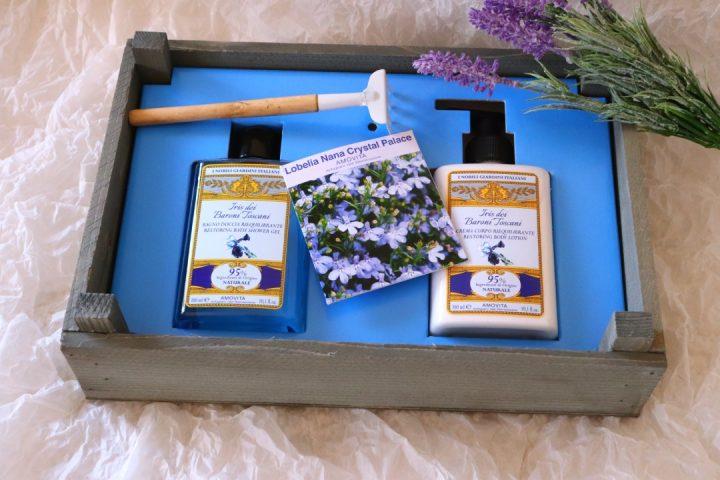 special box amovita, home garden kit 2.0