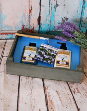 home garden kit 2.0, amovita, idea regalo, special box