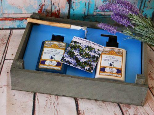 Special Box Amovita – il regalo perfetto per tutte le occasioni