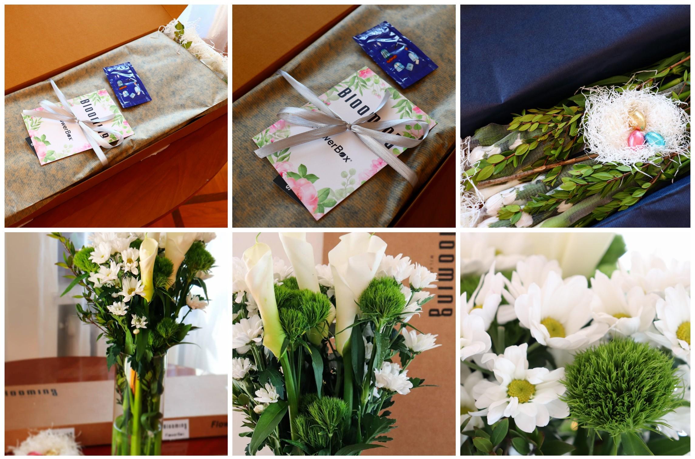 flowerbox pasquale ines