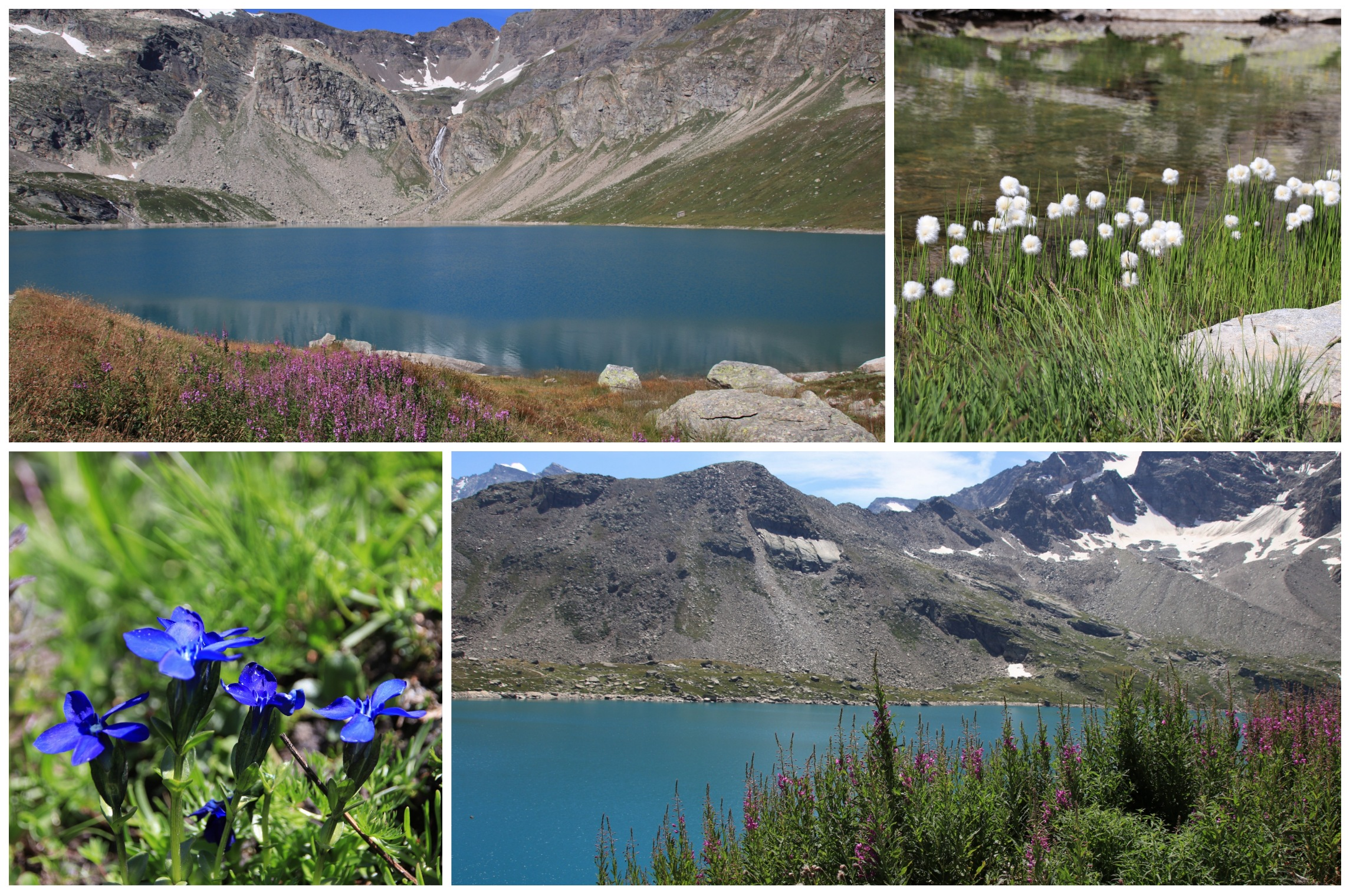 trekking lago serrù