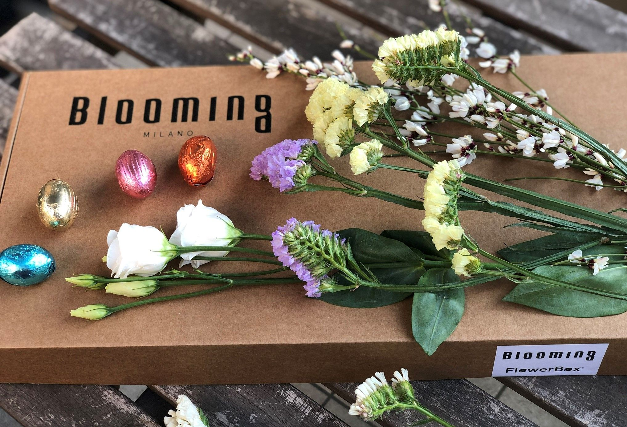 flowerbox pasquale blooming